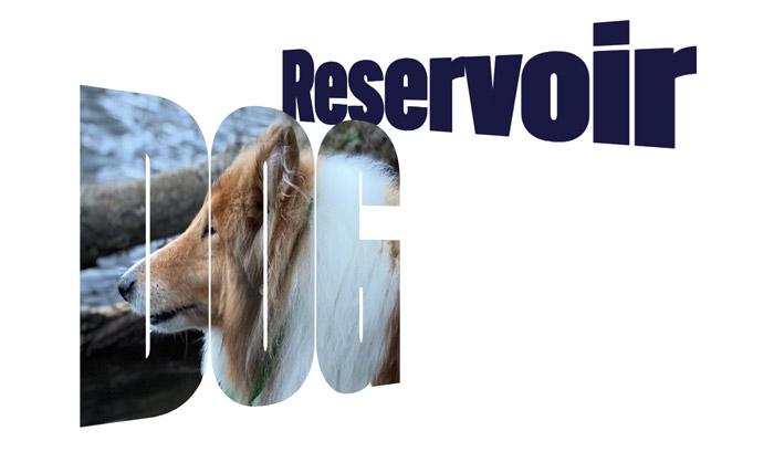 Reservoir Dog in text, skewed, masked and filled