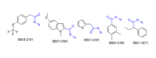 Carboxylic Acids Hydrazides (1,122 compounds)