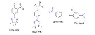 Boronic Acids and Esters (193 compounds)