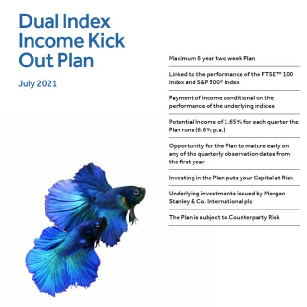 dual index