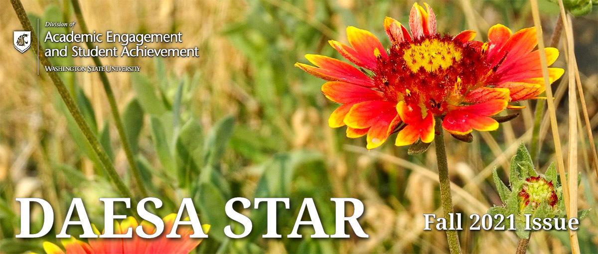 DAESA STAR enewsletter: Fall 2021 issue.