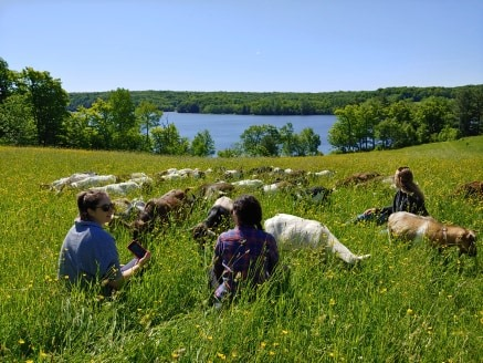 JUNE UTTERSON GOAT WALK/CACAO CEREMONY