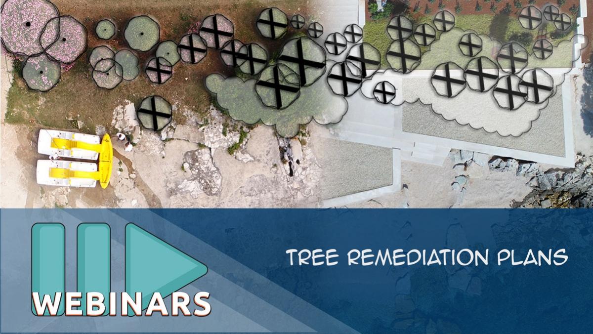 Recorded Webinar: Tree Remediation Plans