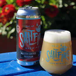 SaltFire Brewing - Master Control Program