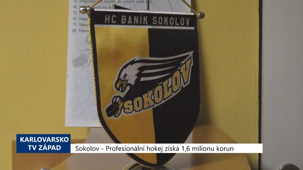 Karlovarský kraj: Zprávy 21. týdne 2020 (TV Západ)