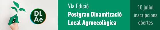 VI edició Postgrau DLAe IGOP-ICTA