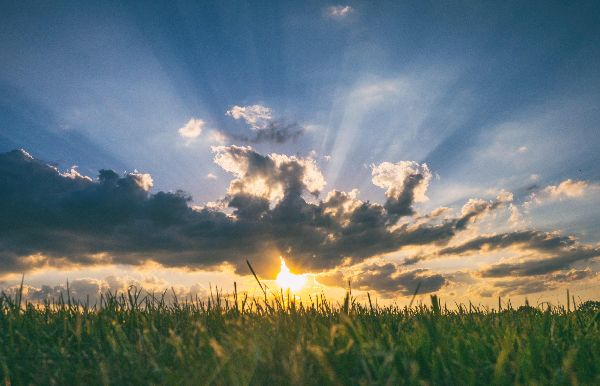 Sunset in a blue sky with clouds over a grassy field