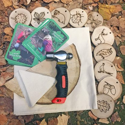 hammer, wood discs with woodland creatures and plants, and activity cards, laid out on a leafy floor