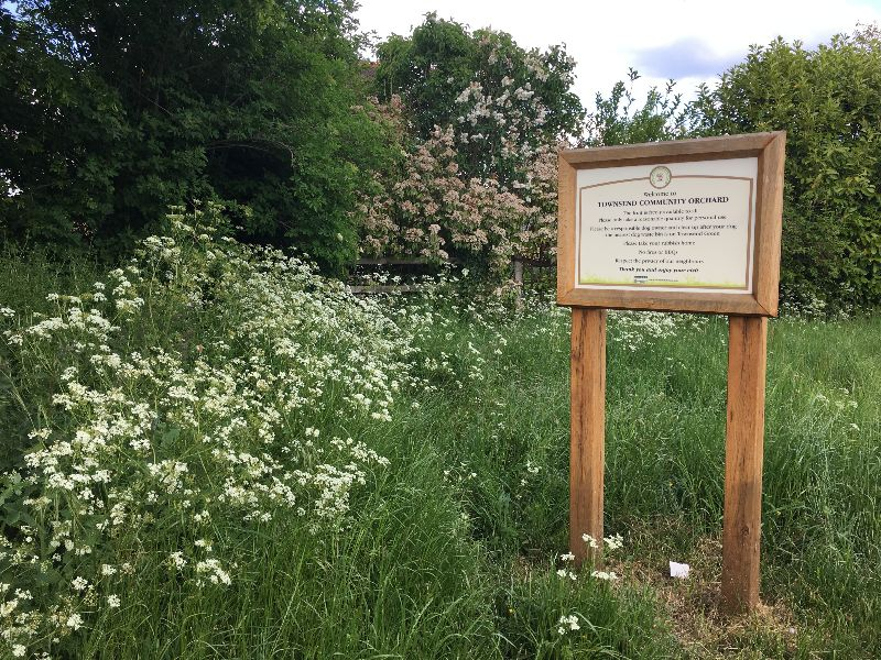 Tonwsend Community Orchard sign with wildflowers