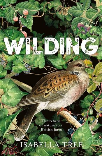 Book cover for 'Wilding' by Isabella Tree, showing a bird sitting on a branch