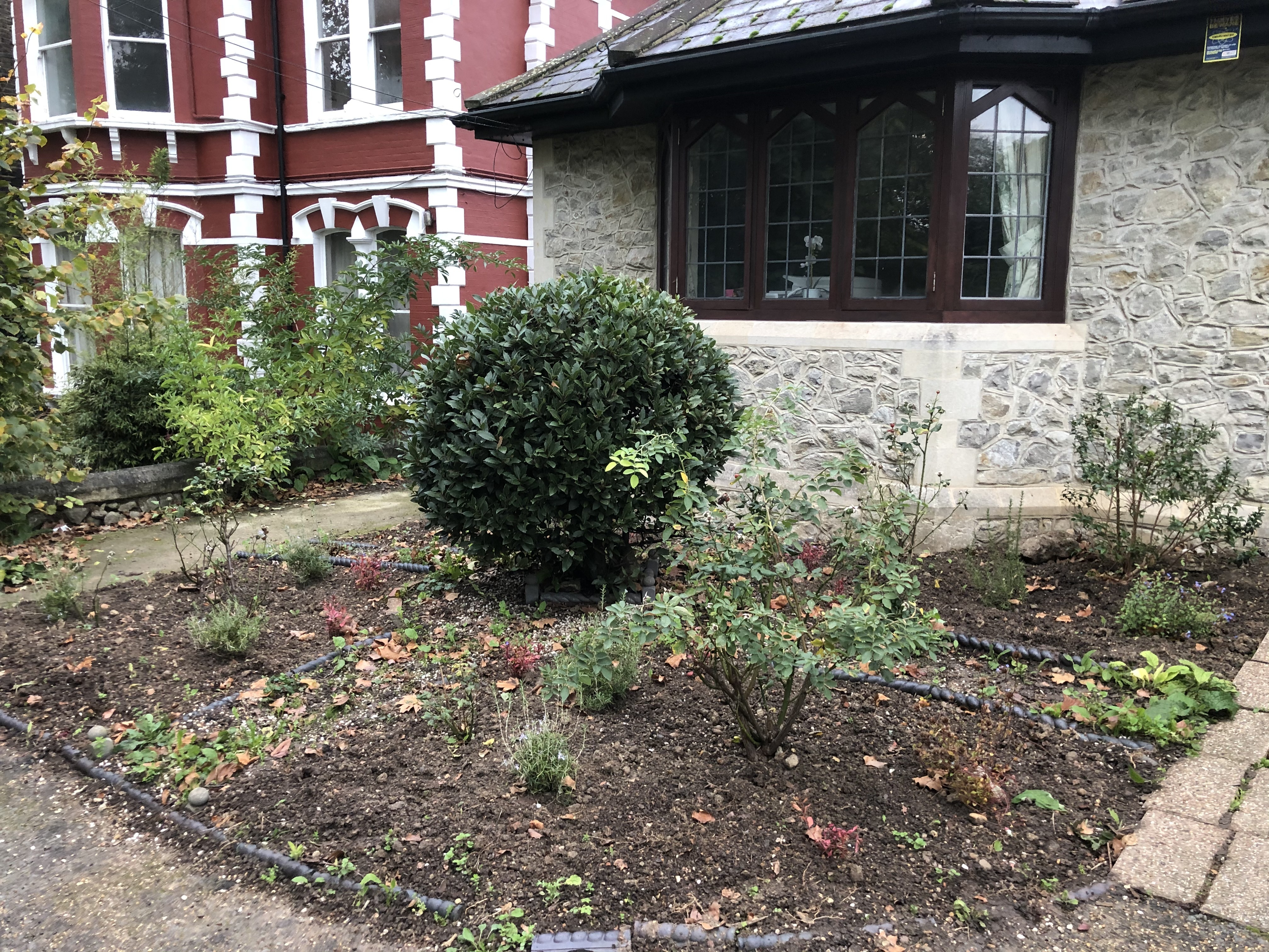 Image of the Knot Garden in Church