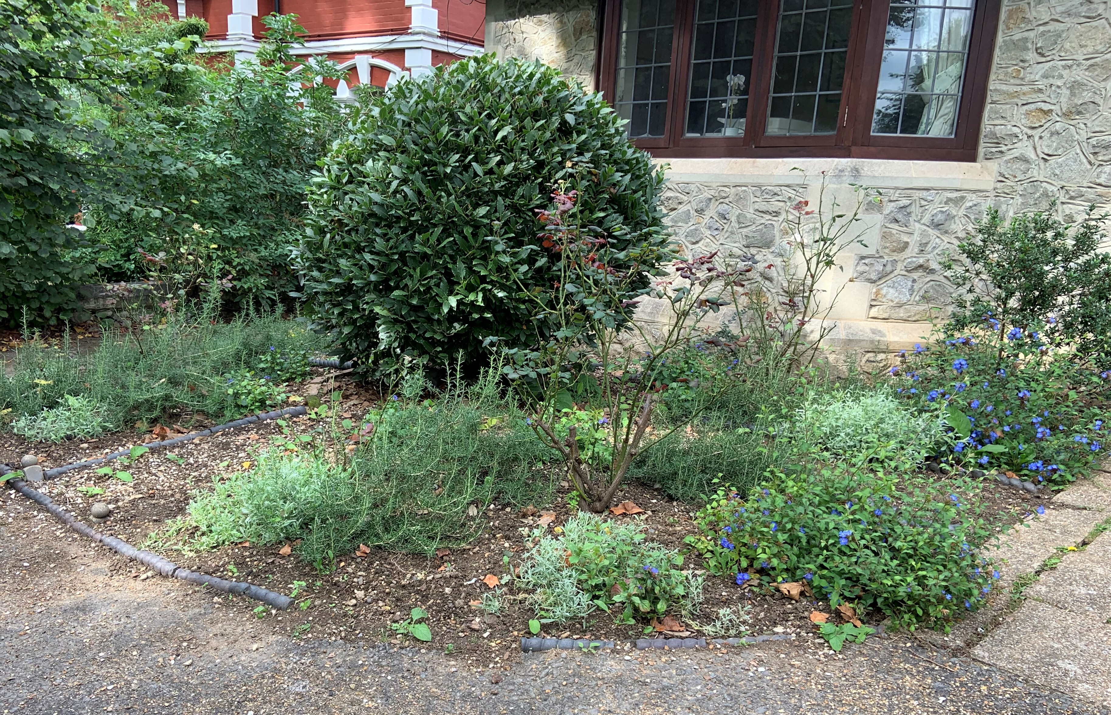 An image of the rosemary garden on the church grounds