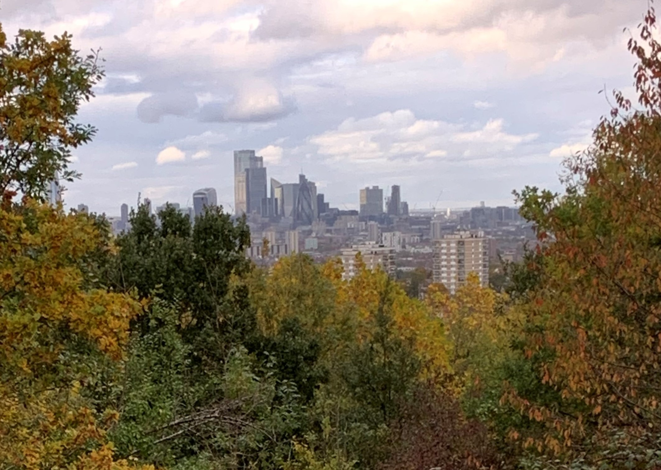 View of the City above autumnal trees in foreground, with clouds scudding across a pale sky above
