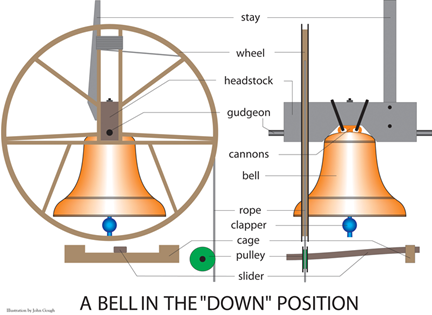 Labelled parts of a bell