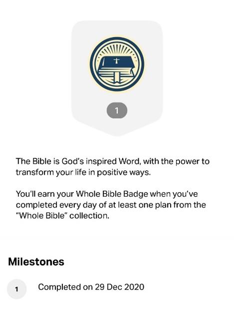 Bible badge