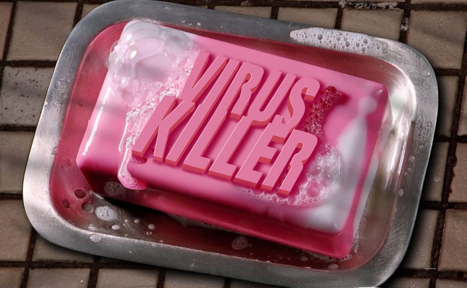 """virus killer"" bar of soap"