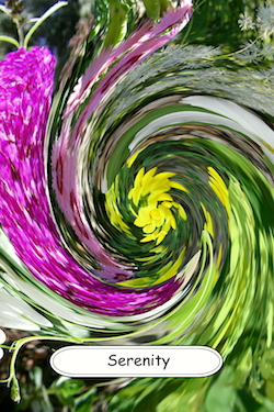 Serenity living flower essence fusion
