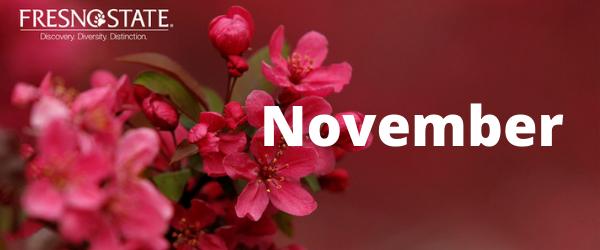 Decorative Image: November