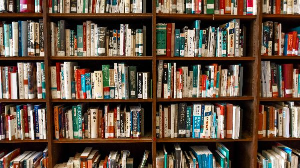 image of a bookshelf