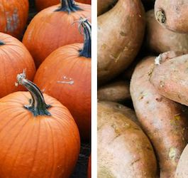 Group of Pumpkins on the Left, Group Sweet Potatoes on the Right