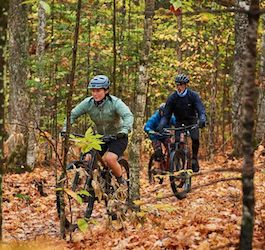 3 Cyclists in Forest