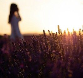 Woman in Field of Flowers Silhouetted by Sunrise
