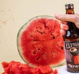 Hand Holding Bottle of Beer in Front of Slived Watermelon