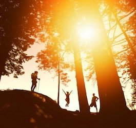 Group Hiking in Forest Silhouetted by Sun