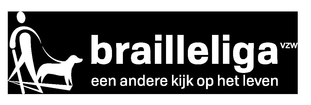 Logo Braille