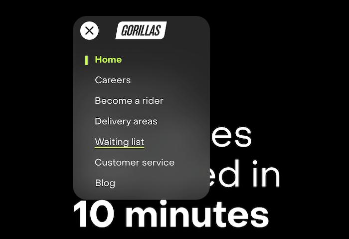 Gorillas navigation