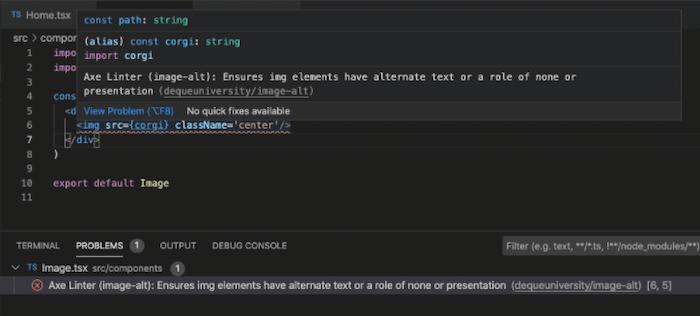 axe Accessibility Linter checking source code