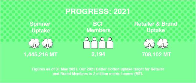 Progress Infographic