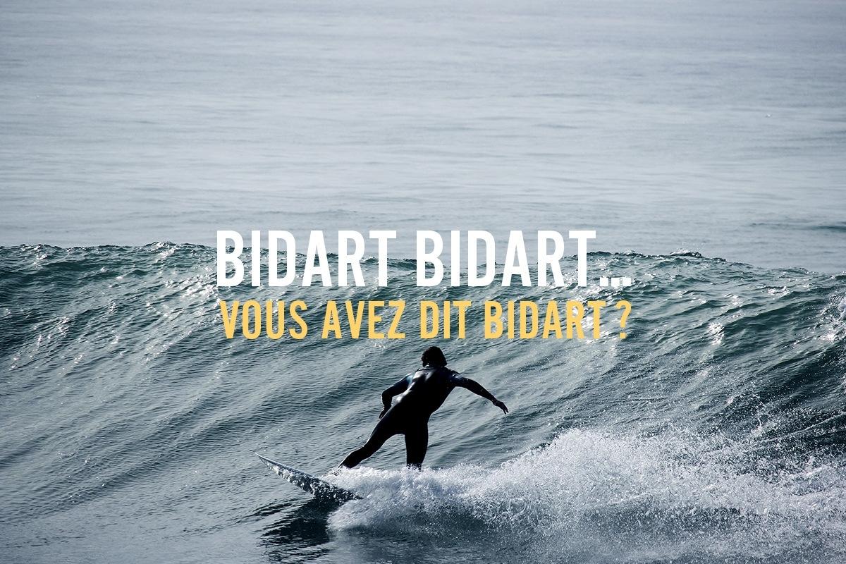 Surf Bidart