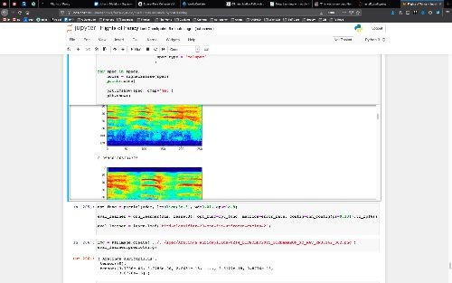 Another screenshot of a Jupyter notebook, this time showing the model classifying audio files into bird species.