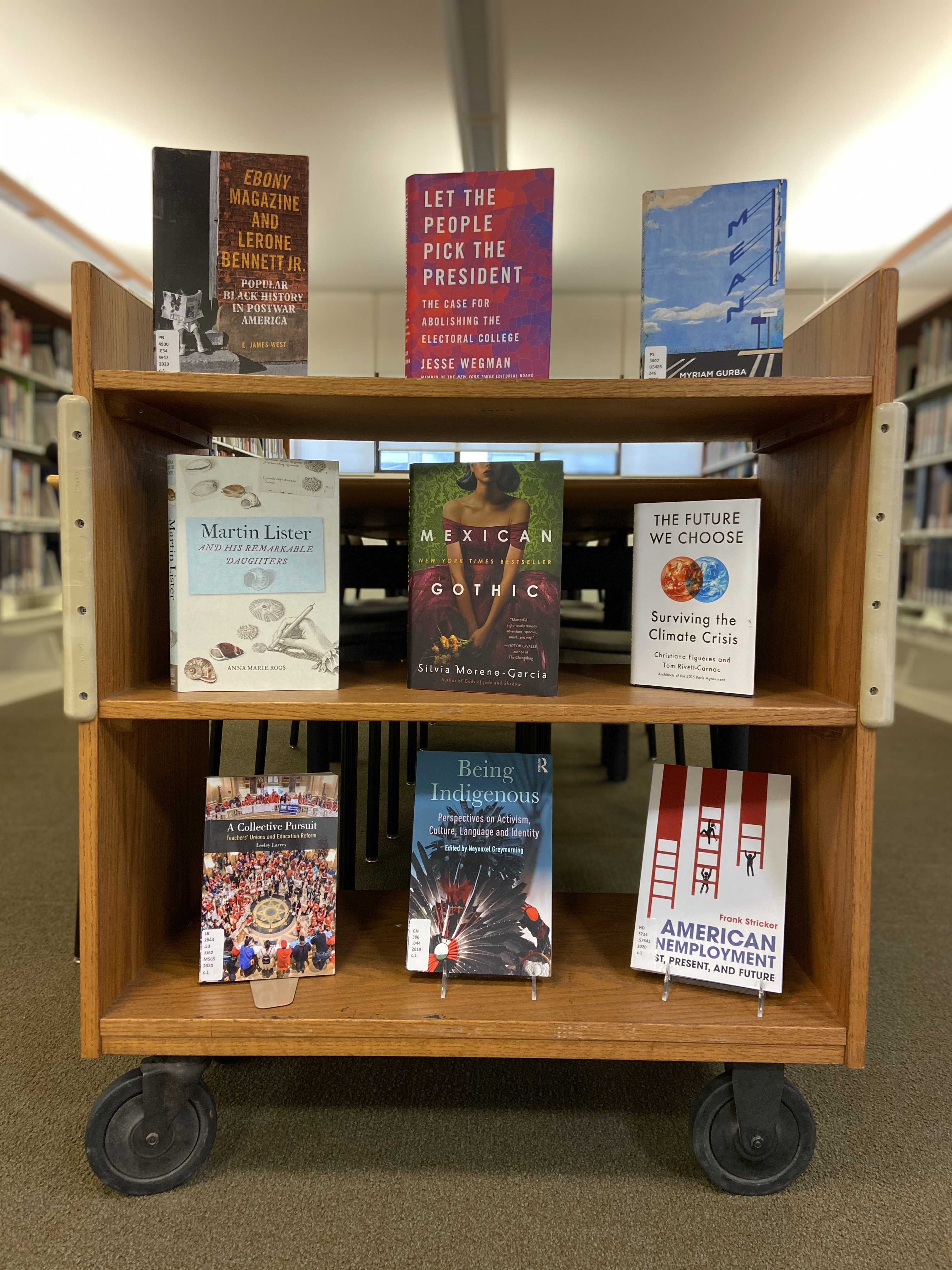 Photo of a library cart with the books listed below on display.