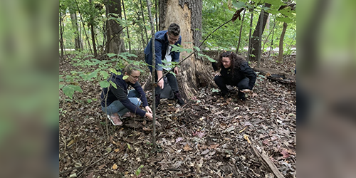 Laine Hackenberg and Clara Miller, members of the Blooms and Shrooms Club, look for mushrooms and other fungi on campus while Penn State staff member Pembroke Childs, at right, observes.  IMAGE: JACK OULIGIAN