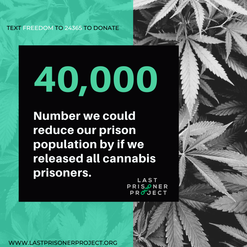 40,000: Number we could reduce our prison population by if we released all cannabis prisoners. Text FREEDOM to 24365 to donate