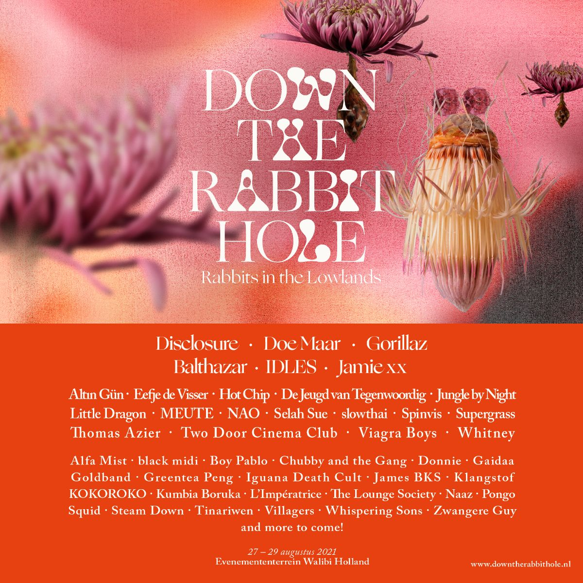 Down The Rabbit Hole - Rabbits in the Lowlands: New names 2