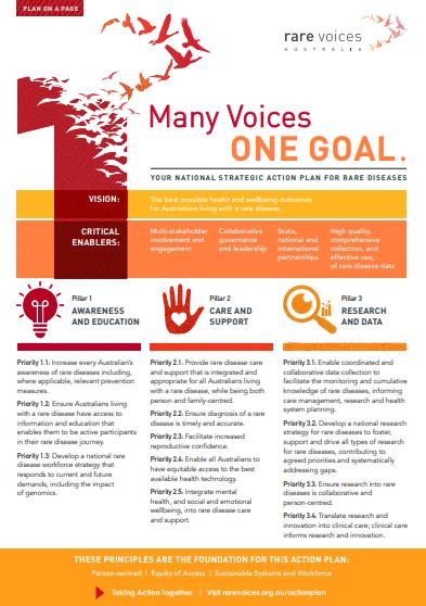 Rare Voices Australia Plan on a Page