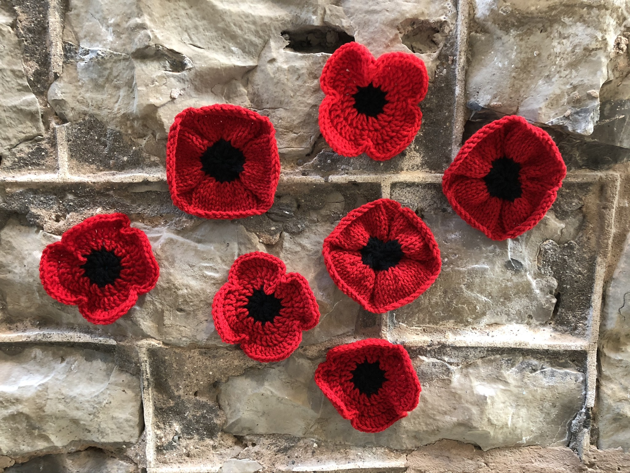 Picture of Poppies on a wall