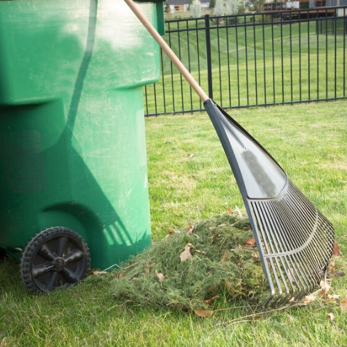 Grass clipping and rake.