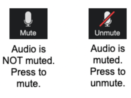 Mute icon depicting a microphone: Audio is NOT muted. Press to mute.  Unmute icon depicting a microphone with a diagonal stroke through it: Audio is muted. Press to unmute.
