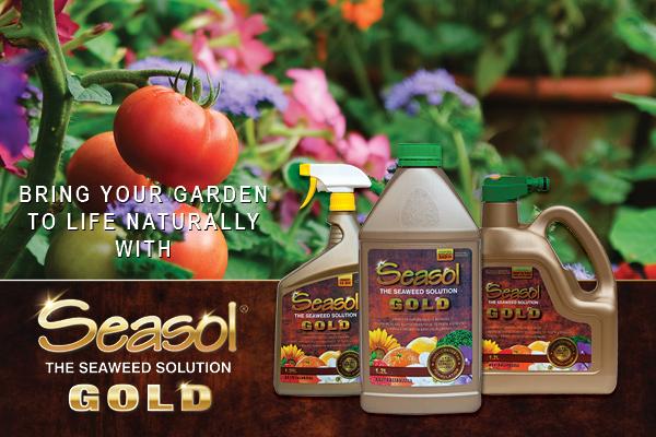 Seasol Gold