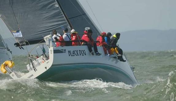 J/111 sailing Brisbane Race