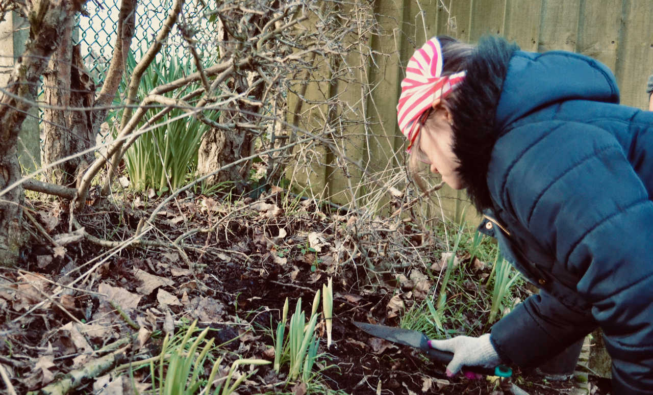 Young woman planting bulbs
