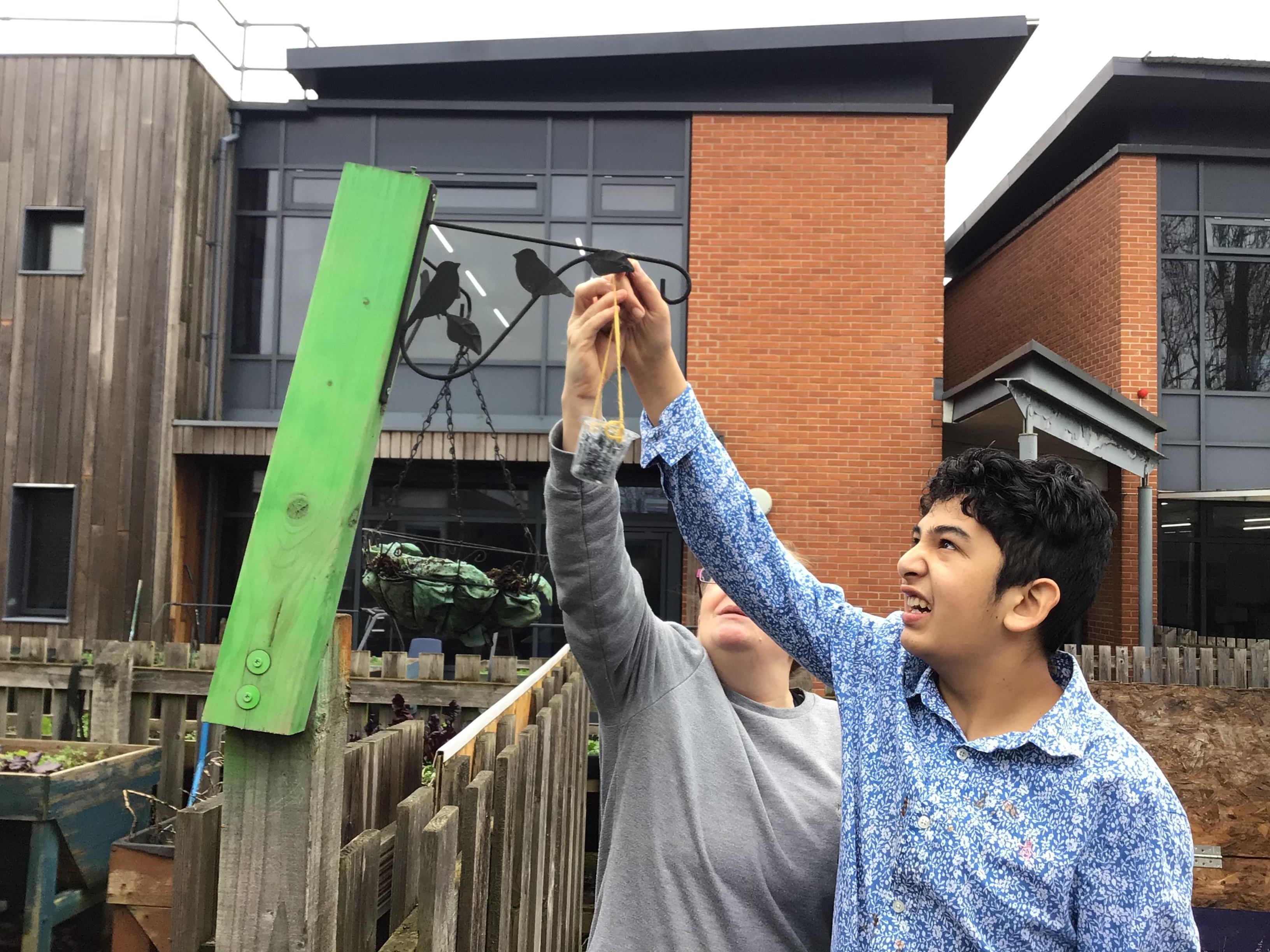 Male student and teacher hanging bird feeder