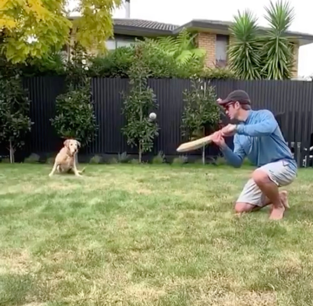 Kane Williamson and his dog at first slip