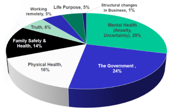 Pie chart showing the greatest challenges people face. Mental health is the largest section at 29%