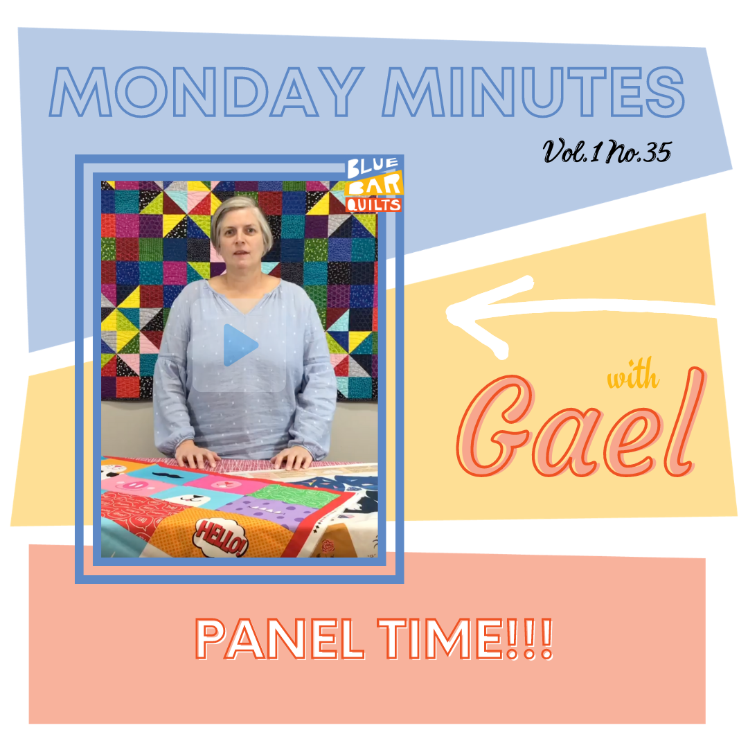 Monday Minutes with Gael of Blue Bar Quilts - Vol. 1 No. 35 - Panel Time!!!