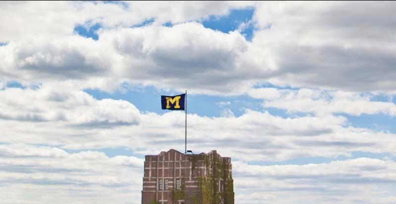 "Michigan ""M"" Flag Image"